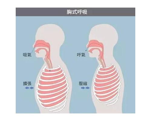 倾行健康运动时用嘴呼吸,还是用鼻子呼吸?